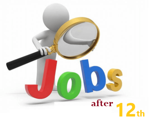 Jobs After Class 12th - Best High Money Making Jobs Goverment And Private